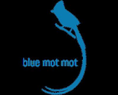blue mot mot